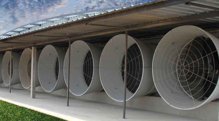 настенный вентилятор для свинофермы